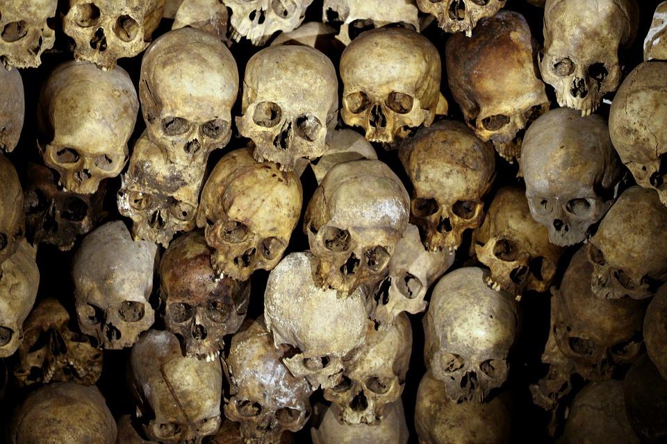 ancestors - skulls