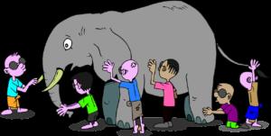 reality - elephant