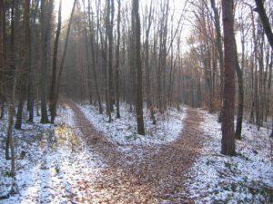 ancestor rituals - crossroads